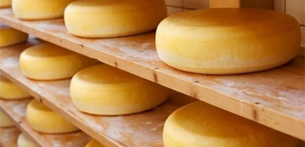 Cheese Rasuwa
